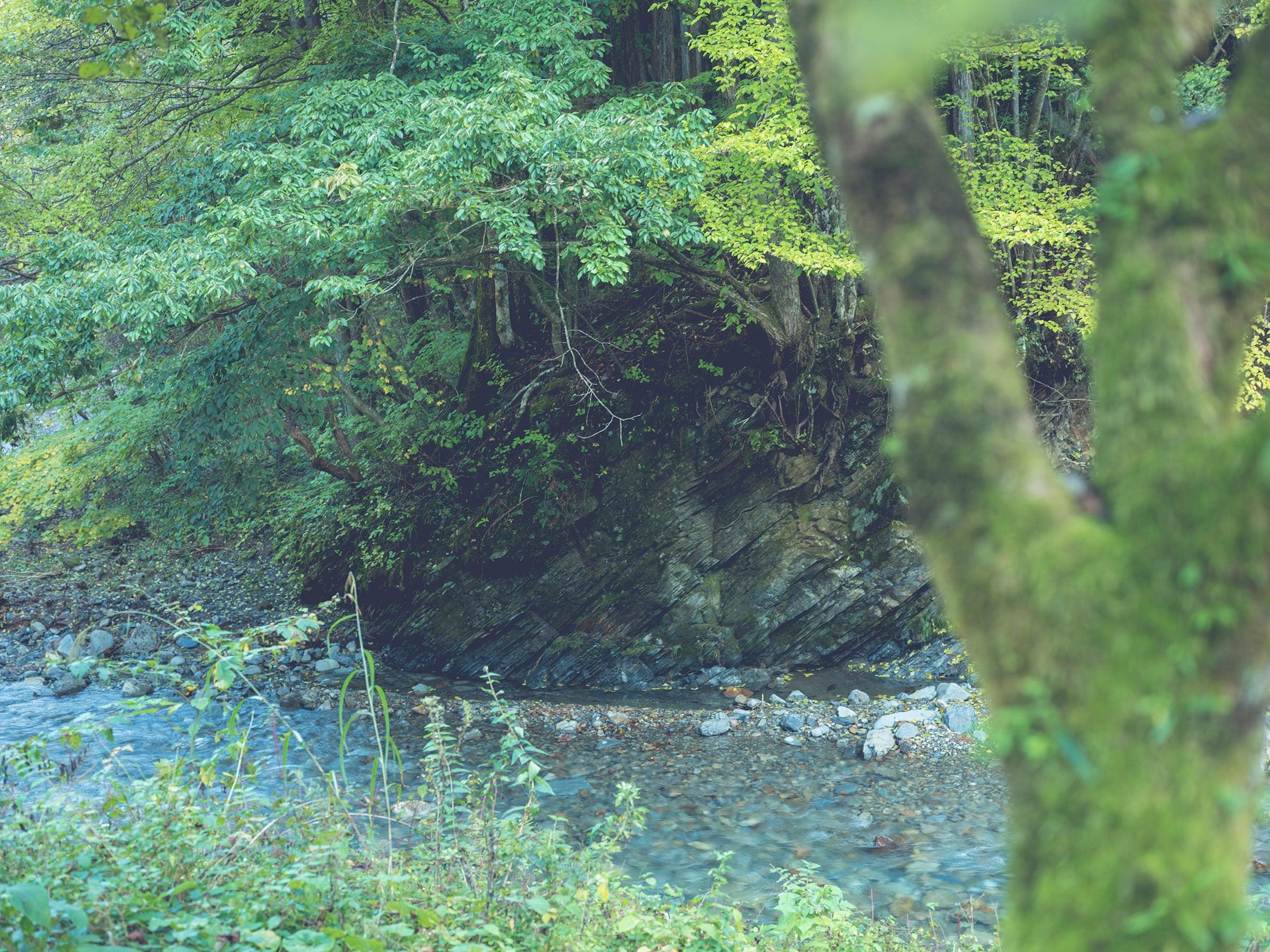 癒しの渓流カフェもグランピングも 思いたったら東京の森へエスケープ!